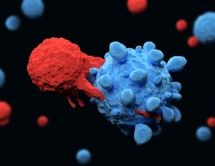 Public and private SARS-CoV-2 T cell receptors may be crucial for pan-coronavirus vaccines