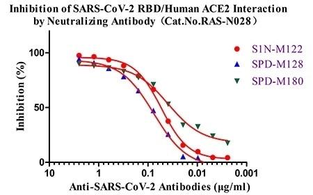 Anti-SARS-CoV-2 (B.1.1.7) Neutralizing Antibody Titer Serologic Assay Kit (Spike RBD) (Cat.No.RAS-N028) is used to detect the inhibition of SARS-CoV-2 RBD/human ACE2 interaction by anti-SARS-CoV-2 neutralizing antibodies Cat. No. S1N-M122, Cat. No. SPD-M128 and Cat. No. SPD-M180. As shown in the figure above, Cat. No. S1N-M122 is more potent than Cat. No. SPD-M128 and Cat. No. SPD-M180 in blocking SARS-CoV-2 RBD/human ACE2 interaction.