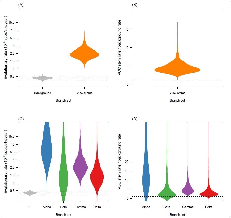 Violin plots for posterior statistics of fixed local clock models (FLC). (A) is for a FLC where the stem branches of VOCs share an evolutionary rate that is different to that of the background. The evolutionary rate for variants of concern (VOC) stem branches is shown in orange and the background in grey. The dashed line represents the mean background rate and the dotted lines are the 95% credible interval. (B) is the ratio of the evolutionary rate for VOC stem branches and the background under the same model and the dashed line represents a value of 1.0 where the background and VOC stem rate would be the same. (C) and (D) show the corresponding statistics for the FLC stems model, where the stem branch of every VOC has a dierent rate. Abbreviation