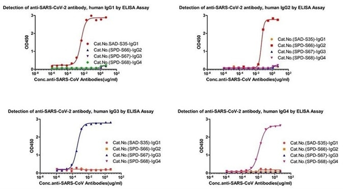 Cross-validation data for antibody subtype detection.