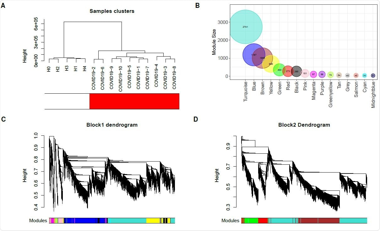 Construction of weighted co-expression network. (A) Sample dendrogram and trait heatmap. (B) Module size. (C and D) Cluster dendrogram block 1 and block 2. Each color represents one specific co-expression module, and branches above represent genes.