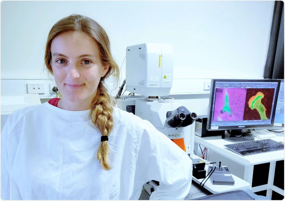 UNSW Sydney scientists discover how tiny anchors help the cells to stay in place