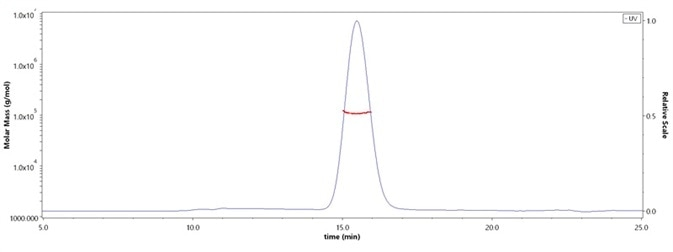 The purity of Human EGF R, His Tag (Cat. No. EGR-H5222) was more than 90% and the molecular weight of this protein is around 90–115 kDa verified by SEC-MALS