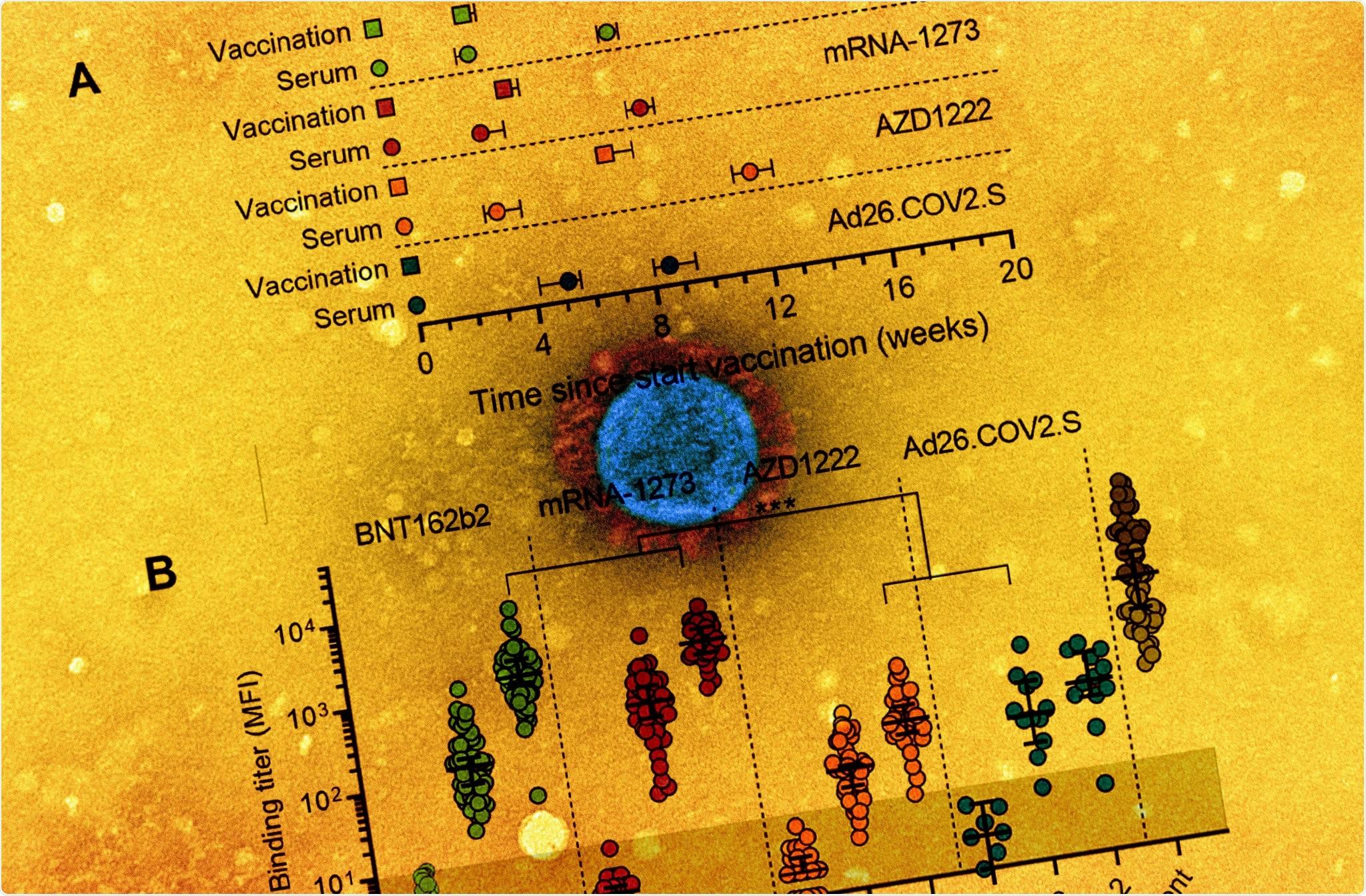 Study: Four SARS-CoV-2 vaccines induce quantitatively different antibody responses against SARS-CoV-2 variants. Image Credit: NIAID