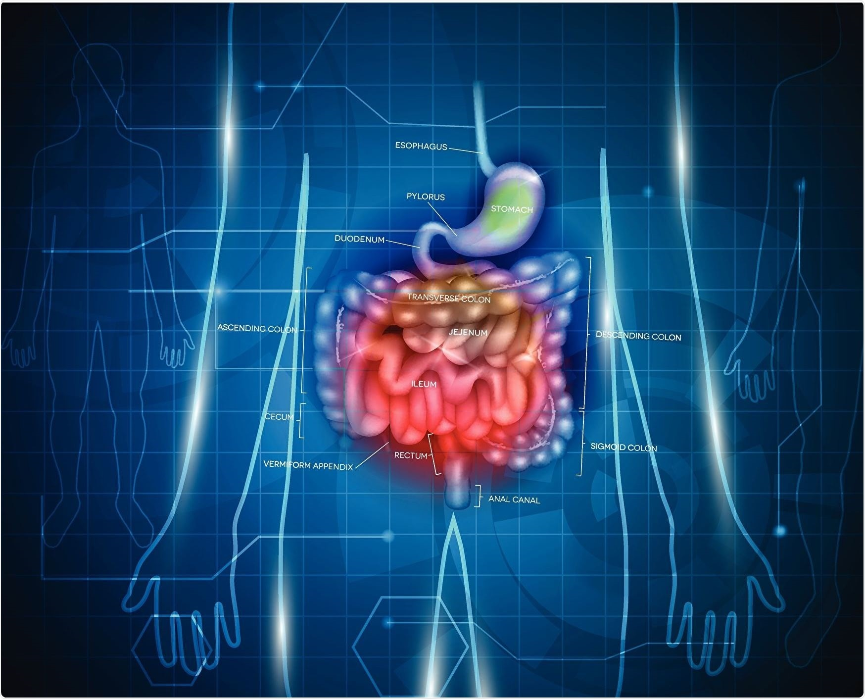 New imaging technique uses photonics for early diagnosis of bowel cancer