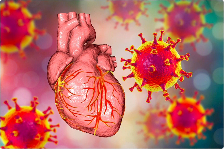 Study: mRNA COVID-19 Vaccination and Development of CMR-confirmed Myopericarditis. Image Credit: Kateryna Kon / Shutterstock