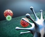 T cell immunity induced after mild COVID could contribute to protection against re-infection