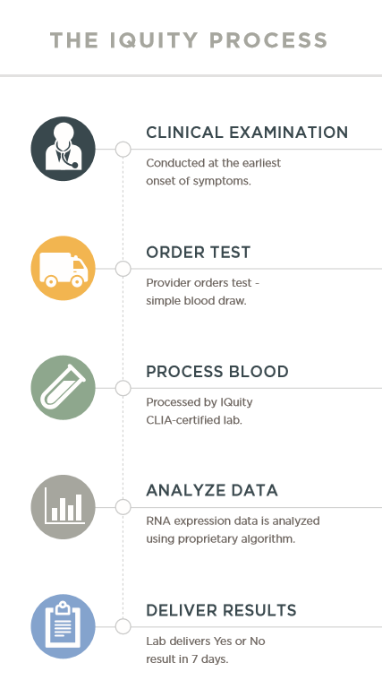 IQUITY process infographic