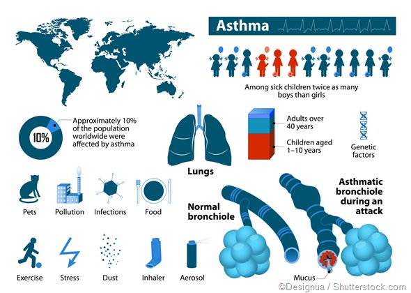 Asthme infographic