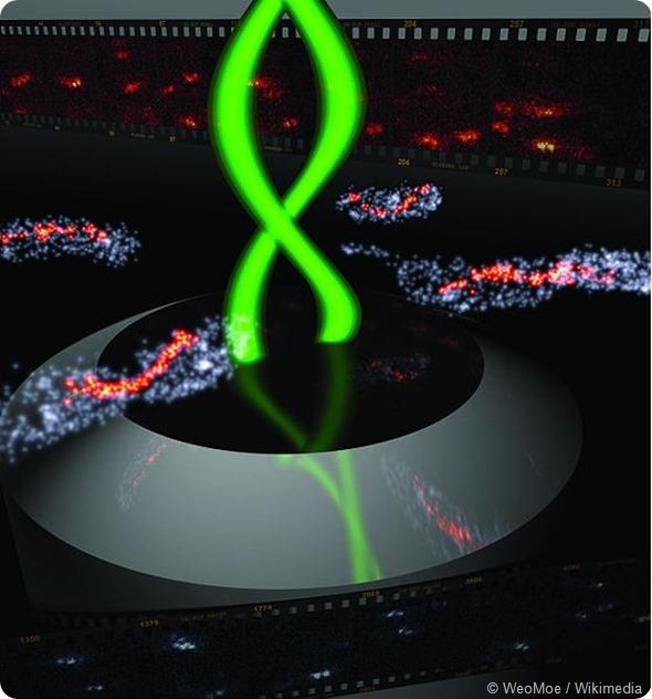 Bacteria 3D Double Helix