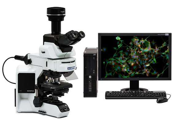 DP74 microscope and monitor