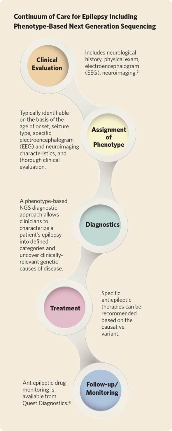Epilepsia infographic dos diagnósticos da procura