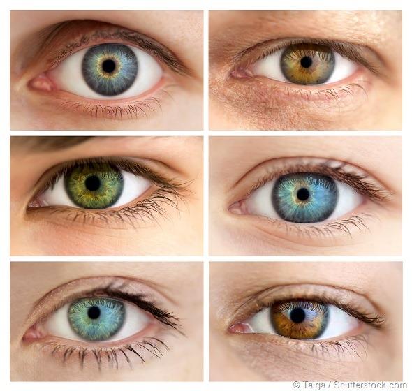 Eyes género
