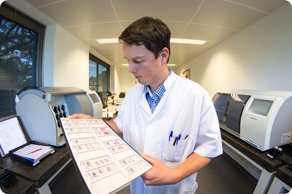 Lab technician tissue slides