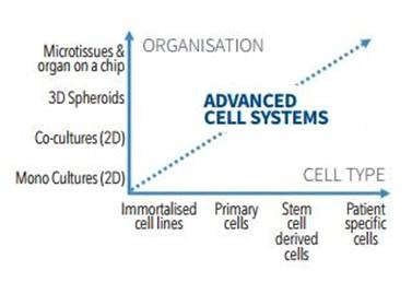 Researchers are combining more relevant cell types