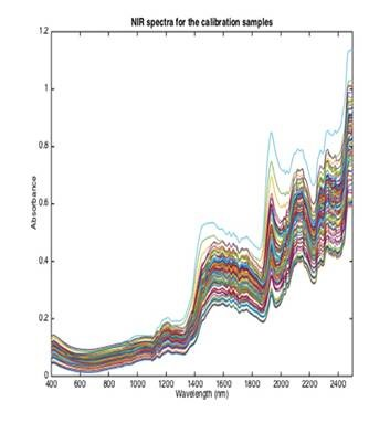 NIR spectra acquired for calibration samples.