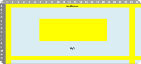Pipetting scheme for glow luminescence measurements in a 384-well plate. Wells filled with luciferase and reaction buffer are colored yellow, wells filled with water are blue.
