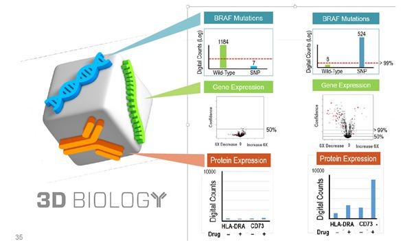 biologia 3D