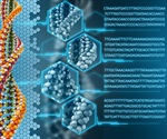 DNA sequences encode information in many different ways