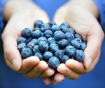 Low-dose antioxidant supplementation may reduce the risk of cancer among men, but not in women