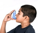 ER visits for allergy-induced asthma could increase among children vulnerable to climate change