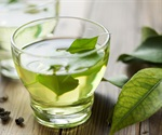 Green tea slows down plaque formation in Huntington's disease