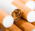 Children born of fathers exposed to nicotine inherit enhanced chemical tolerance, study shows