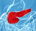 Reprogramming liver cells to become pancreatic cells may help diabetic patients