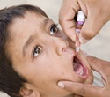 Polio labs equipped to tackle neglected tropical diseases