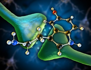 Research provides drug developers with much needed insight into serotonin receptor