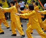 The effectiveness of Tai Chi for chronic musculoskeletal pain conditions