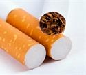 Male tobacco smokers have decreased number of cannabinoid CB1 receptors, study reveals