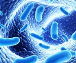 Bacterial infections may contribute to far more cancers than previously thought, shows study