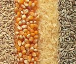 Combining NIR Spectroscopy and Machine Vision for Rapid Grain Inspection