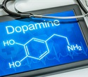 Exercise alters brain's dopamine system to help treat addiction, study finds