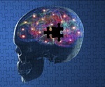 Study may provide novel therapeutic approach for Huntington's, Parkinson's diseases