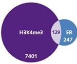 Chromatrap® - Rapid, Consistent, High-Throughput ChIP-seq Assay for Protein-DNA Analysis
