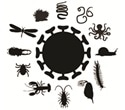 Landmark study of virosphere uncovers 1445 viruses