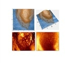 Using PinPoint™ Mode for Surface Nanochemical Property Imaging