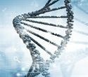 Random DNA copying 'mistakes' account for most cancer mutations, study finds