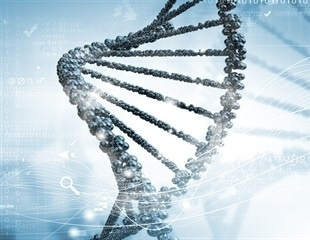 New maps of chemical marks on DNA could help illuminate the causes of developmental disorders