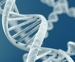 Relationship found between DNA nanomechanics and damage