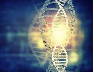 DNA computer could be important step towards development of smart, 'intelligent' drugs