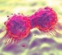 Lethal DNA re-replication may be used to attack cancer cells