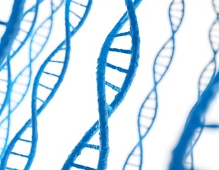 Researchers identify specific target sites for DNA methylases