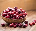 Carbohydrate found in cranberries may aid growth of beneficial gut bacteria, study reports