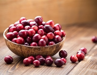 Cranberry extract makes bacteria more sensitive to antibiotics, study finds