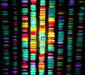 Whole-exome sequencing may routinely miss detecting some disease-causing genes, say researchers