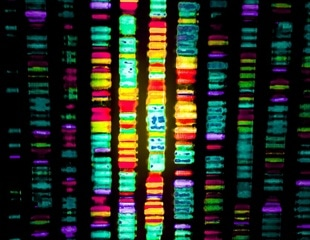 Rutgers researchers identify small mutations for AML and MDS through deep DNA sequencing