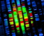 NIST researchers simulate new method for fast, precise DNA sequencing